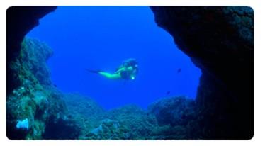 Microsoft Word - Faire de la plongŽe dans les Iles Canaries.doc