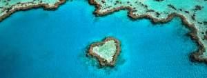 hear-reef-dans-la-grande-barriere-de-corail-en-australie