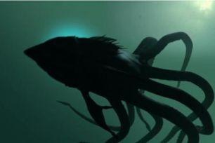 Sharktopus, la créature mi-pieuvre mi-requin dans une série B produite par Roger Corman.